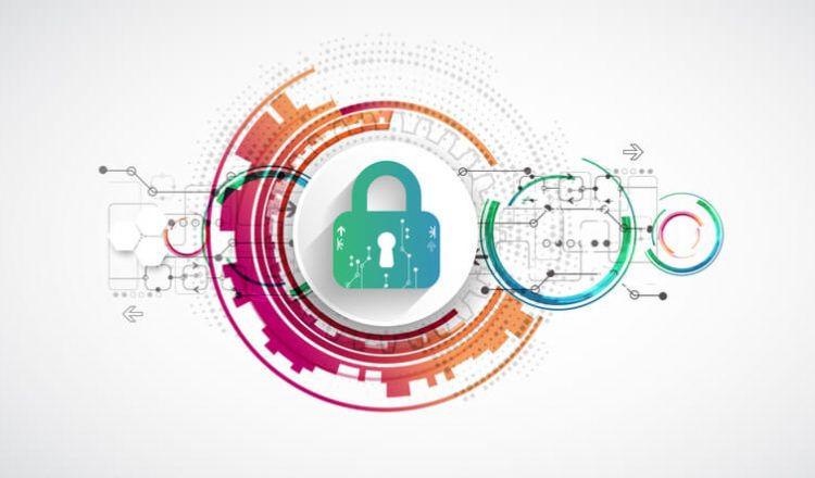 Vulnerability management process and steps