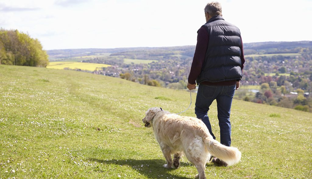 Walking a dog is a lucrative side hustles